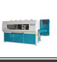 Three dise sanding machine QSG 300R7
